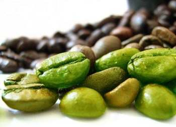 The Fat Burning Ability of Green Coffee Beans